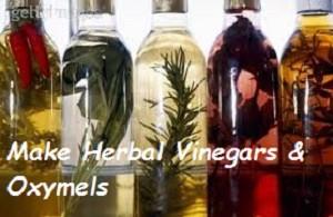 herbalvinegarsoxymels
